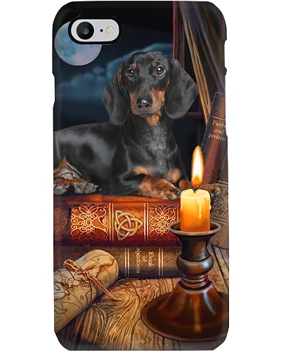Dachshund And Books