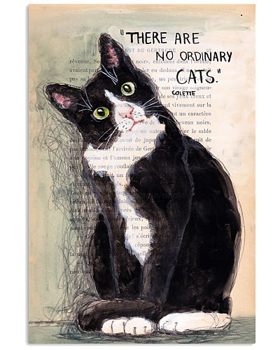 There Are No Ordinary Cats Poster