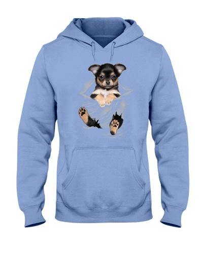 Chihuahua Scratches