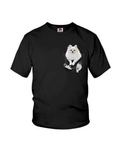 Pomeranian In Pocket