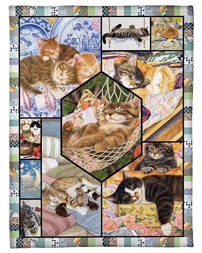 Cat Funny Sleep Cat Blanket Graphic Design