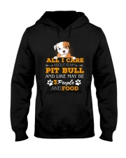 Pit Bull- All I Care Hooded Sweatshirt front