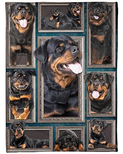 Rottweiler Faces Blanket