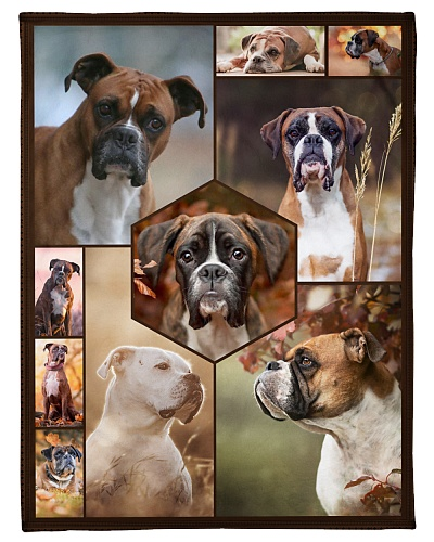 Boxer Funny Blanket Faces Graphic Design
