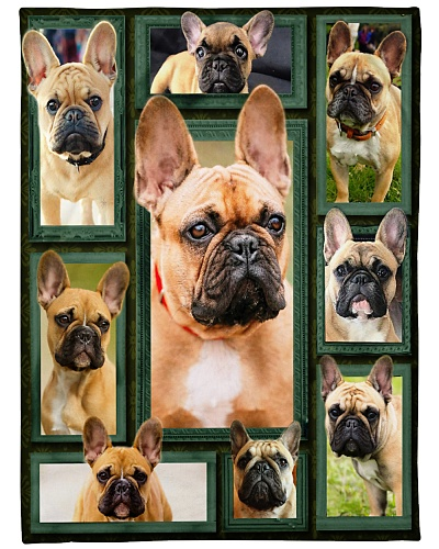 French Bulldog Funny Face Beauty Graphic Design