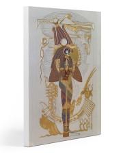 Horus case dvhd-nth 20x30 Gallery Wrapped Canvas Prints thumbnail