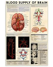 blood supply brain  11x17 Poster front