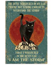 BLACK CAT - I AM THE STORM 11x17 Poster front