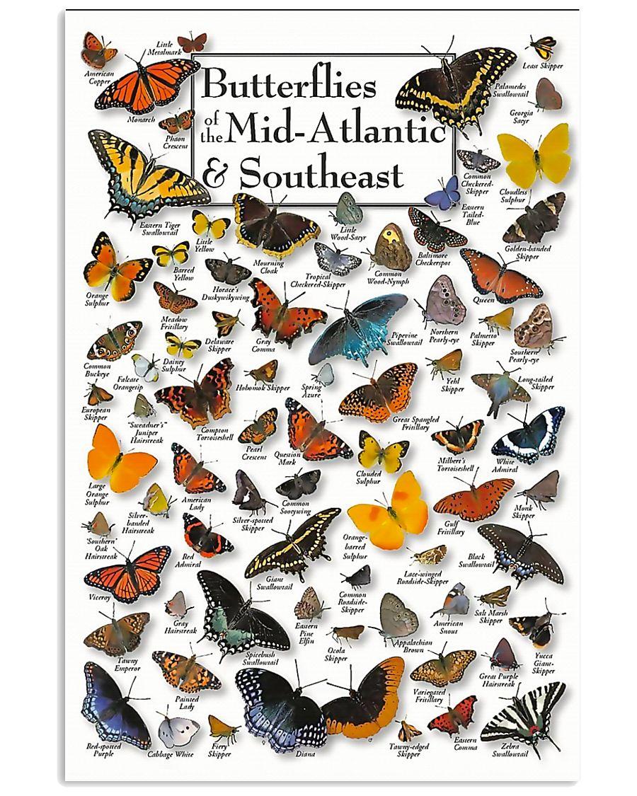 BUTTERFLIES OF MID-ATLANTIC  - SOUTHEAST 11x17 Poster
