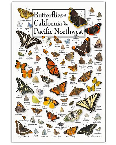BUTTERFLIES OF CALIFORNIA AND PACIFIC NORTHWEST