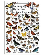 BUTTERFLIES OF NEW ENGLAND 11x17 Poster front