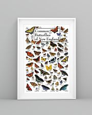 BUTTERFLIES OF NEW ENGLAND 11x17 Poster lifestyle-poster-5