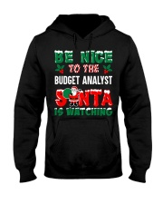 Be nice to the Budget Analyst Hooded Sweatshirt front
