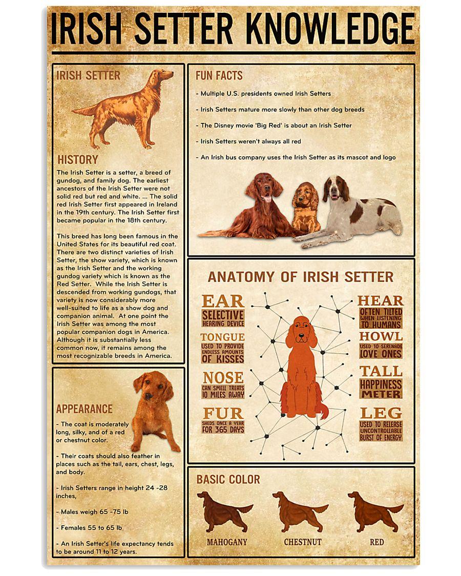 IRISH SETTER Knowledge 11x17 Poster