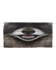 Raccoon Face Cloth face mask front