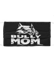 Bully Mom Cloth face mask front