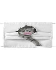 Funny Cat Bubblegum Cloth face mask front