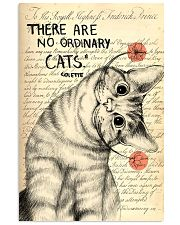 There is no ordinary cat 11x17 Poster front