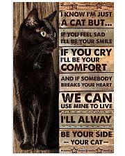 I'm just a cat 11x17 Poster front