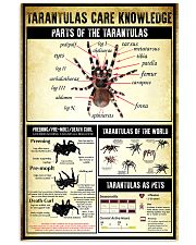 Tarantula Care Knowledge 11x17 Poster front
