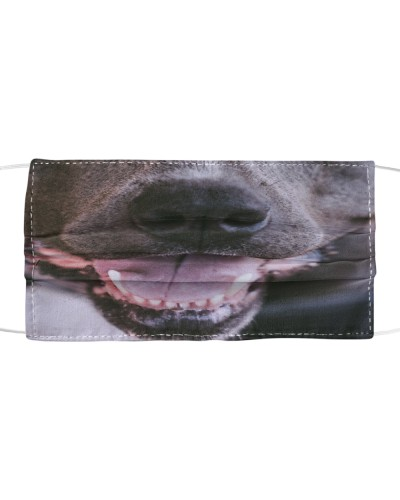 Pitbull  nose mouth smile cloth face mask