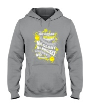 Softball No Glass Stains  Hooded Sweatshirt tile