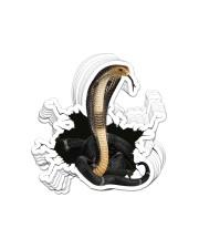 Snake Crack St Sticker - 10 pack (Vertical) front