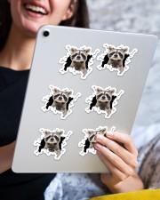 raccoon crack sticker Sticker - 6 pack (Horizontal) aos-sticker-6-pack-horizontal-lifestyle-front-12
