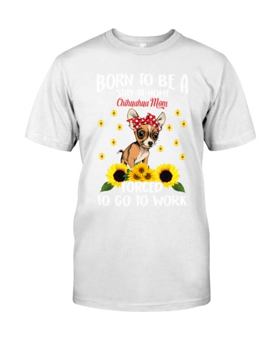 born-chihuahua-mom-force-work