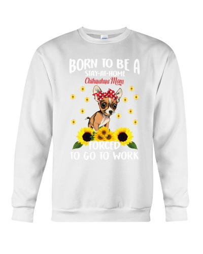 born-chihuahua-mom-force-work