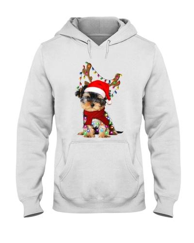 yorshire-reindeer