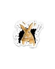 bunny crack sticker Sticker - 6 pack (Horizontal) front