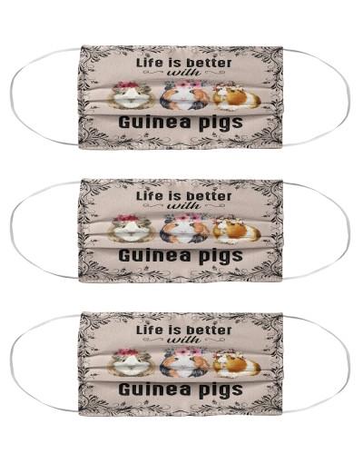 guinea pigs mas