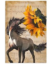 horse sunshine poster 16x24 Poster front