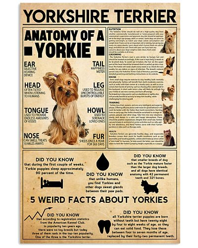 Yorkshire Terrier knowledge
