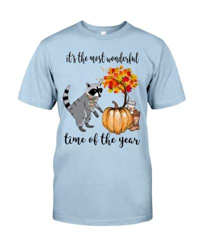 raccoon-wonderful