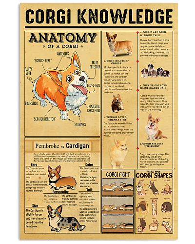 corgi-knowledge