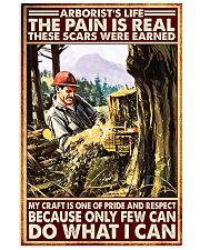 arborist life pain real pt lqt nna 11x17 Poster front