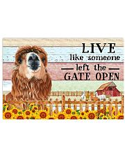 alpaca gate open poster 17x11 Poster front