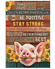 LIMITED EDITION - FUNNY PIG 90143A 11x17 Poster front