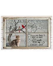 LIMITED EDITION - CAT MAINE COON LOVERS 10881A 17x11 Poster front