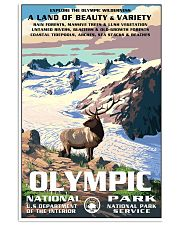 Olympic National Park 24x36 Poster front