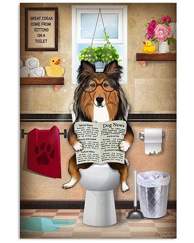 Shelite Toilet Reading Newspaper