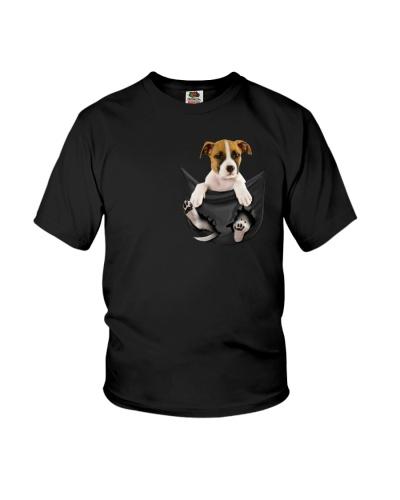 pitbull dog in the pocket