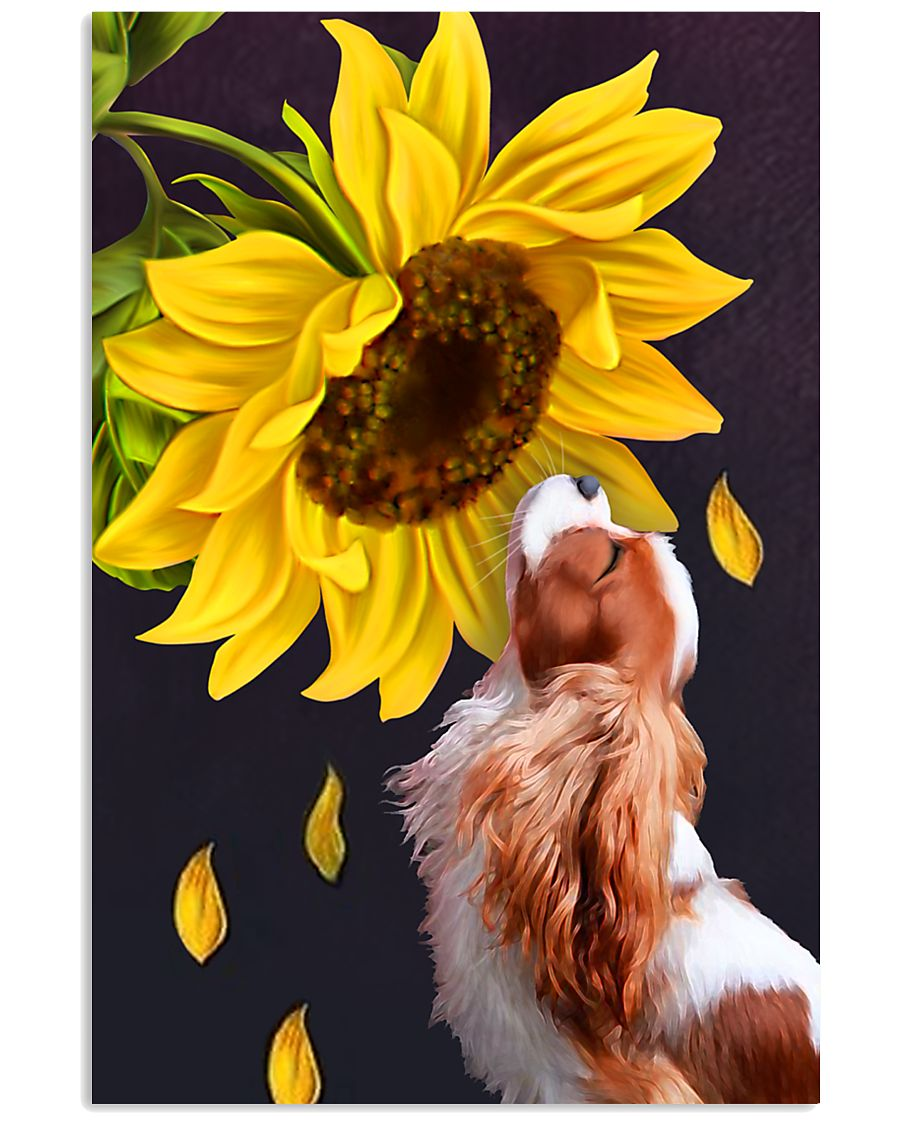 Cavalier sunflower 11x17 Poster