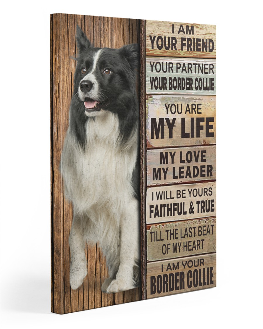Border Collie partner 20x30 Gallery Wrapped Canvas Prints