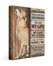 Chihuahua Partner 11x14 Gallery Wrapped Canvas Prints thumbnail