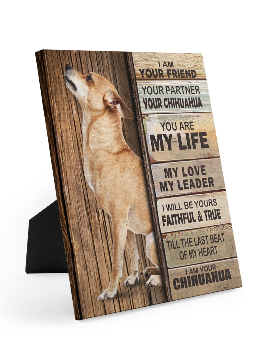 Chihuahua Partner 8x10 Easel-Back Gallery Wrapped Canvas