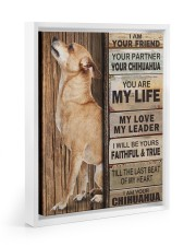 Chihuahua Partner 11x14 White Floating Framed Canvas Prints thumbnail
