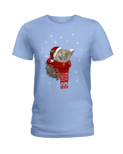 Guinea Pig Christmas Gift